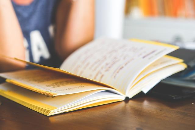 leituradinamica